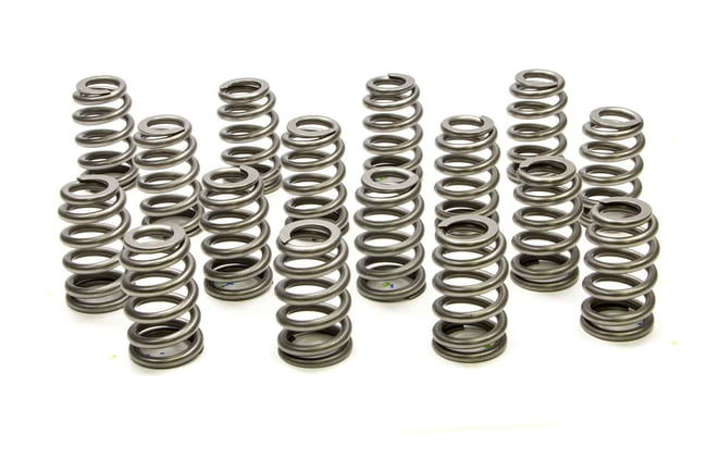 PAC-1255X 1.445 Valve Springs - Ovate Beehive (16)