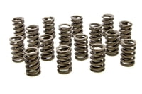 PAC-1201 1.260 Single Valve Springs w/Damper - (16)