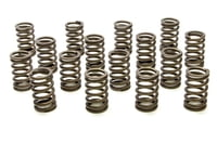 PAC-1212X 1.355 Single Valve Springs - RPM Series (16