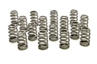 PAC-1219X 1.307 Valve Springs - Ovate Beehive (16)