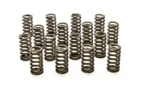 PAC-1221X Dual Valve Springs - Ovate (16) GM LS