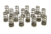 PAC-1409X 1.250 Valve Springs - Ovate Beehive (16)