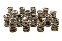 PAC-1901 Valve Springs - HR Series (16)