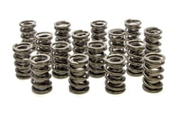 PAC-1509 1.539 Dual Valve Springs Nitrided (16)