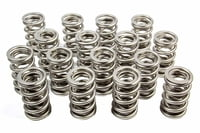 PAC-1561 1.514 Nitrided Dual Springs (16)