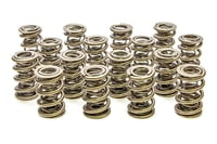 PAC 1351 1.667 Triple Valve Springs - (16)